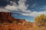 Southwestern Desert