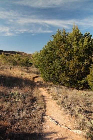Trail around Juniper