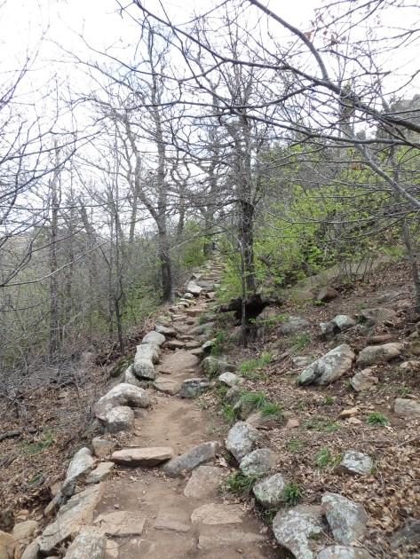Elk Mtn Trail