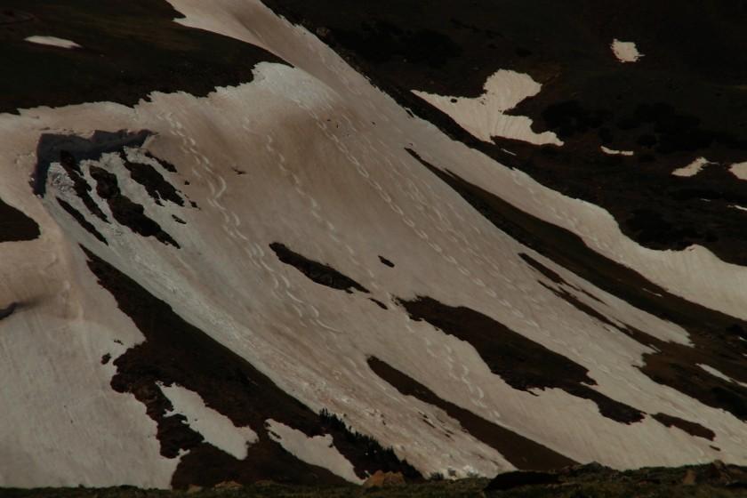 RMNP Ski Trails