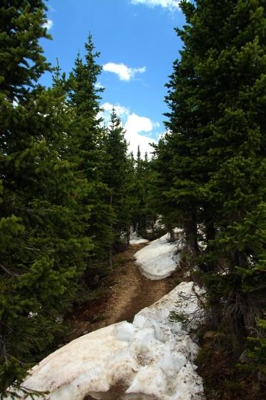 RMNP Poudre Lake Trail