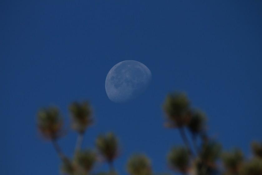 Zion NP Gibbous Moon